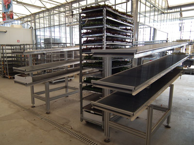 Tray Delivery System